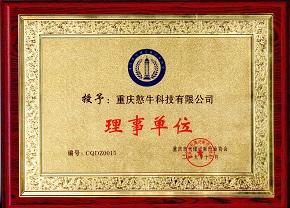 重庆市代理记账协会:理事单位