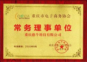 重庆市电子商务协会:常务理事单位