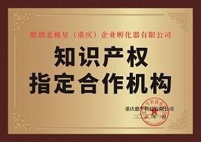 知识产权指定合作机构
